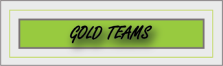 https://midwestspeedfastpitch.org/wp-content/uploads/2021/07/Team-Level-Banner-Gold-e1627319880637.png